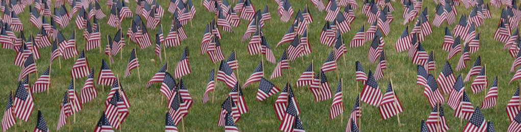 small american flags placed into the grassy ground