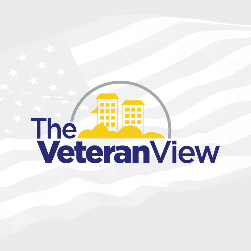 The Veteran View logo